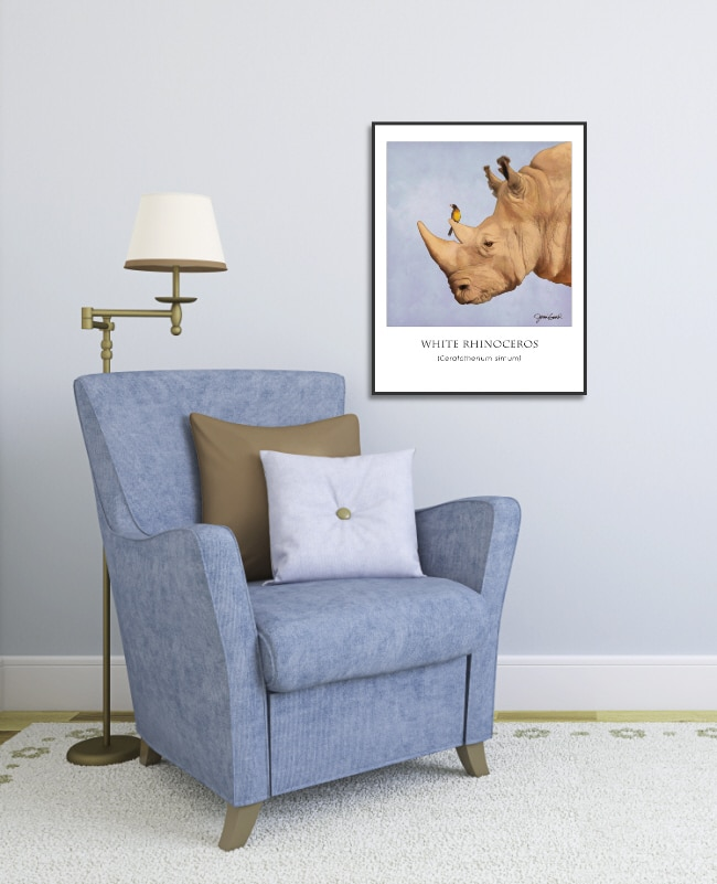 White Rhino poster in a black frame.